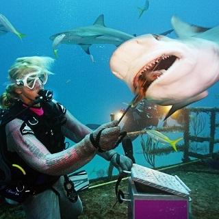 Risks of underwater welding